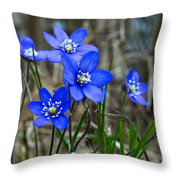 Blue Springtime Throw Pillow