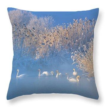 Hoarfrost Throw Pillows