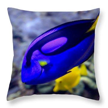 Blue Tang Dory Throw Pillow