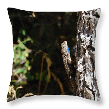 Throw Pillow featuring the photograph Blue Throated Lizard 1 by Debra Thompson