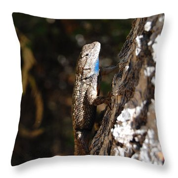 Throw Pillow featuring the photograph Blue Throated Lizard 3 by Debra Thompson
