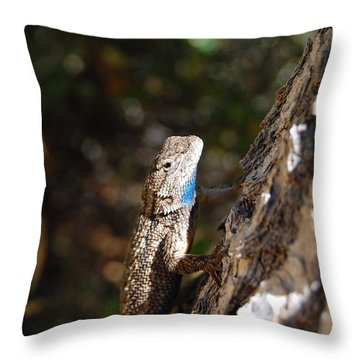 Throw Pillow featuring the photograph Blue Throated Lizard 4 by Debra Thompson