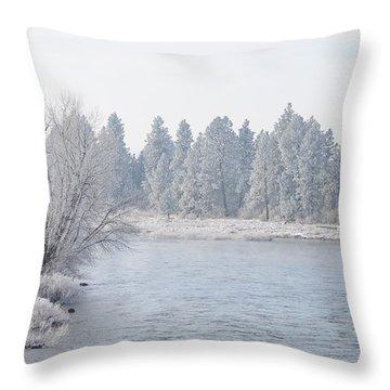 Blue Tint Throw Pillow