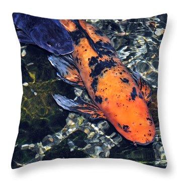 Blue Velvet And Goldie Koi Throw Pillow