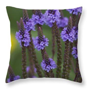 Blue Vervain Throw Pillow