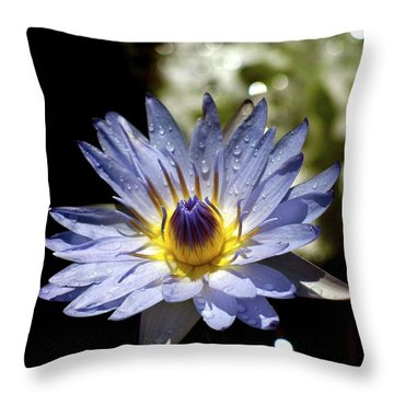 Throw Pillow featuring the photograph Waterlily After The Rain ... by Lehua Pekelo-Stearns