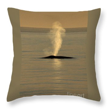 Throw Pillow featuring the photograph Blue Whale At Sunset In Monterey Bay California  2013 by California Views Mr Pat Hathaway Archives