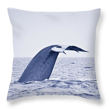 Blue Whale Tail Fluke With Remoras Throw Pillow