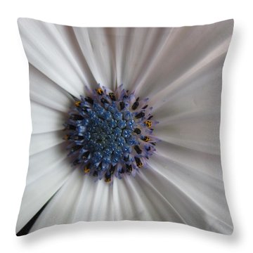 Blue-white Loveliness Throw Pillow