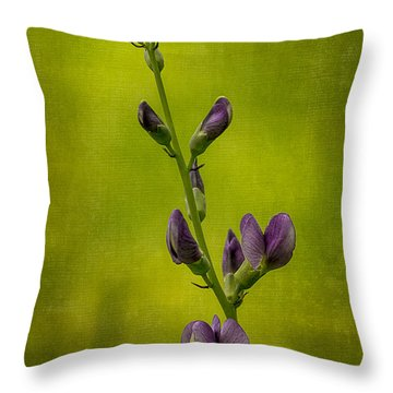 Blue False Indigo Throw Pillows