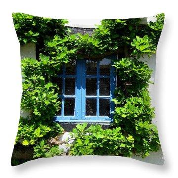 Throw Pillow featuring the photograph Blue Window by Susanne Baumann