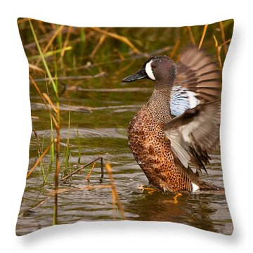 Throw Pillow featuring the photograph Blue-winged Teal by Ram Vasudev
