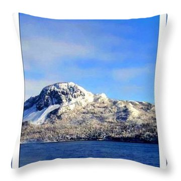 Blue Winter Triptych Throw Pillow by Barbara Griffin