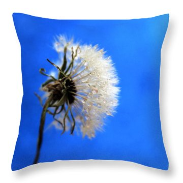 Blue Wish Throw Pillow by Krissy Katsimbras