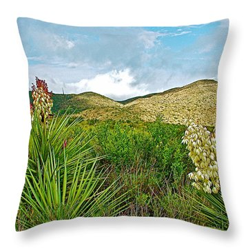 Blue Yucca And Chisos Mountains In Big Bend National Park-texas Throw Pillow