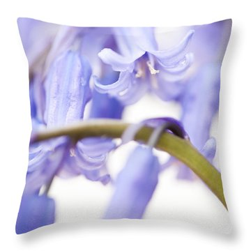 Bluebell Abstract Iv Throw Pillow by Anne Gilbert