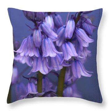 Bluebell Days Throw Pillow