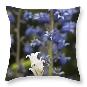 Bluebells 1 Throw Pillow by Steve Purnell