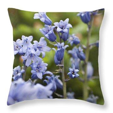 Bluebells 2 Throw Pillow by Steve Purnell