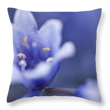Bluebells 5 Throw Pillow by Steve Purnell