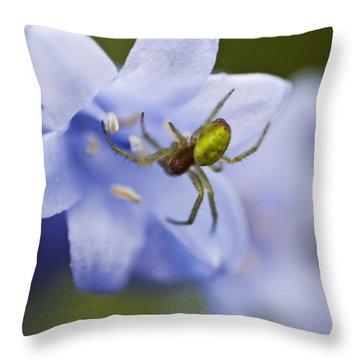 Bluebells 7 Throw Pillow by Steve Purnell