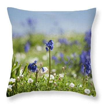 Bluebells In Sea Campion Throw Pillow by Anne Gilbert