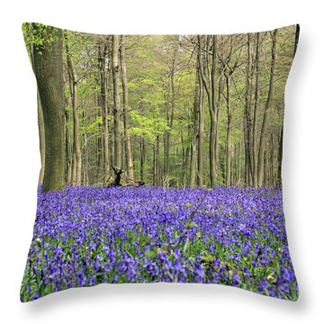 Bluebells Surrey England Uk Throw Pillow