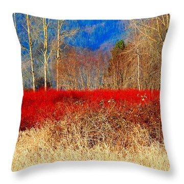 Blueberry Bushes In Winter Throw Pillow by Karen Molenaar Terrell