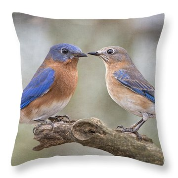 Bluebird Boy Bluebird Girl Throw Pillow