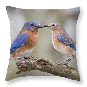 Bluebird Boy Bluebird Girl Throw Pillow by Bonnie Barry
