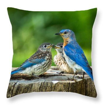 Bluebird - Father And Sons Throw Pillow