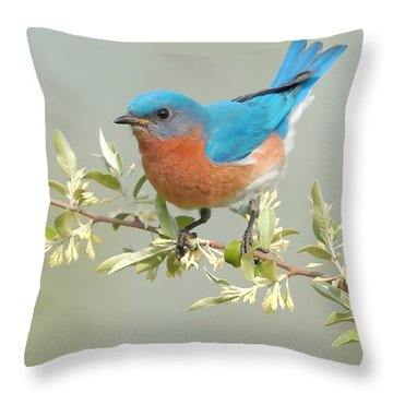 Bluebird Floral Throw Pillow