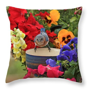 Bluebird Garden Throw Pillow