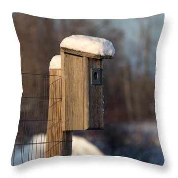Bluebird House Covered With Snow Throw Pillow by Linda Freshwaters Arndt