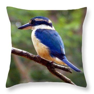 Bluebird In Suva Fiji Throw Pillow