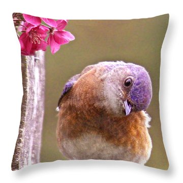 Bluebird Throw Pillow by Jean Noren