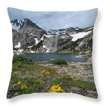 Bluebird Lake - Colorado Throw Pillow