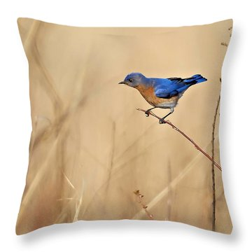 Bluebird Meadow Throw Pillow