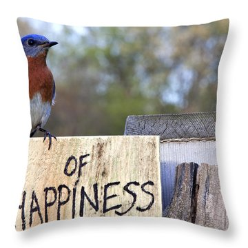 Throw Pillow featuring the photograph Bluebird Of Happiness by John Crothers