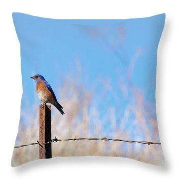 Bluebird On A Post Throw Pillow by Mike  Dawson