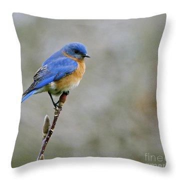 Bluebird On My Tree Throw Pillow