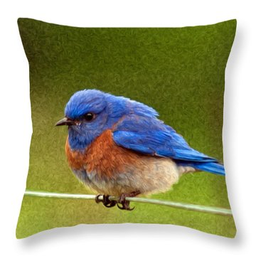 Bluebird  Painting Throw Pillow by Jean Noren