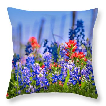 Throw Pillow featuring the photograph Bluebonnet Paintbrush Texas  - Wildflowers Landscape Flowers Fence  by Jon Holiday