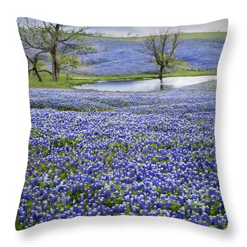 Bluebonnet Pond Throw Pillow