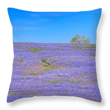 Throw Pillow featuring the photograph Bluebonnet Vista Texas  - Wildflowers Landscape Flowers  by Jon Holiday