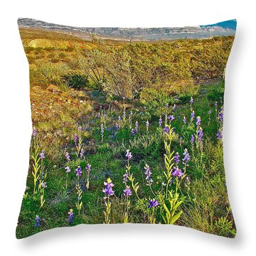 Bluebonnets And Creosote Bushes In Big Bend National Park-texas Throw Pillow