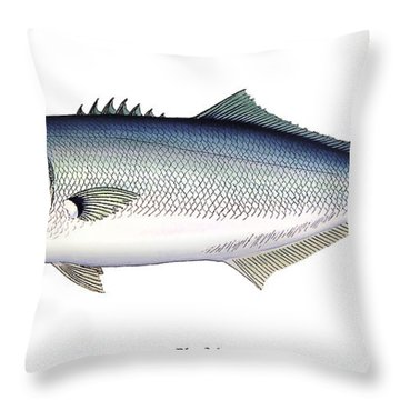 Bluefish Throw Pillow by Charles Harden