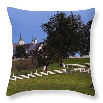 Bluegrass Moonrise Throw Pillow by Alexey Stiop