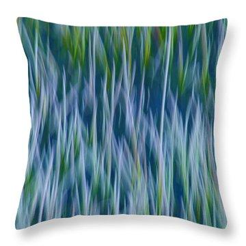Throw Pillow featuring the photograph Bluegrass  by Sherri Meyer