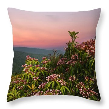 Blueridge Parkway Mountain Laurel Throw Pillow by Randall Branham